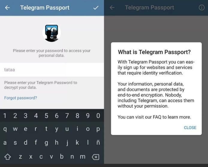 паспорт телеграм