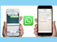 пересылка сообщений и файлов в Whatsapp